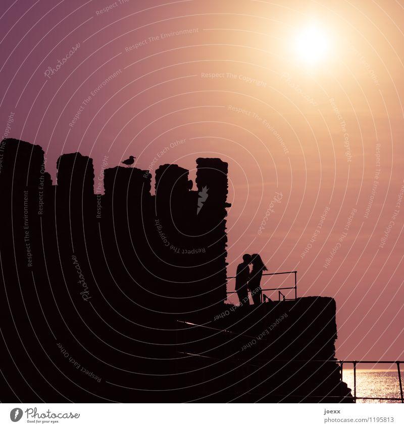 A moment of infinity Summer Summer vacation Sun Ocean Flirt Couple Partner 2 Human being Horizon Sunrise Sunset Ruin Bird Seagull Kissing Embrace Together