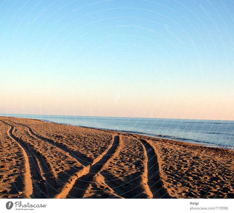 Tire tracks in the sand on the beach in the evening sun Tracks Tractor track Beach Coast Ocean Lake Sea water Waves Surf Sun Horizon Pebble Vacation & Travel