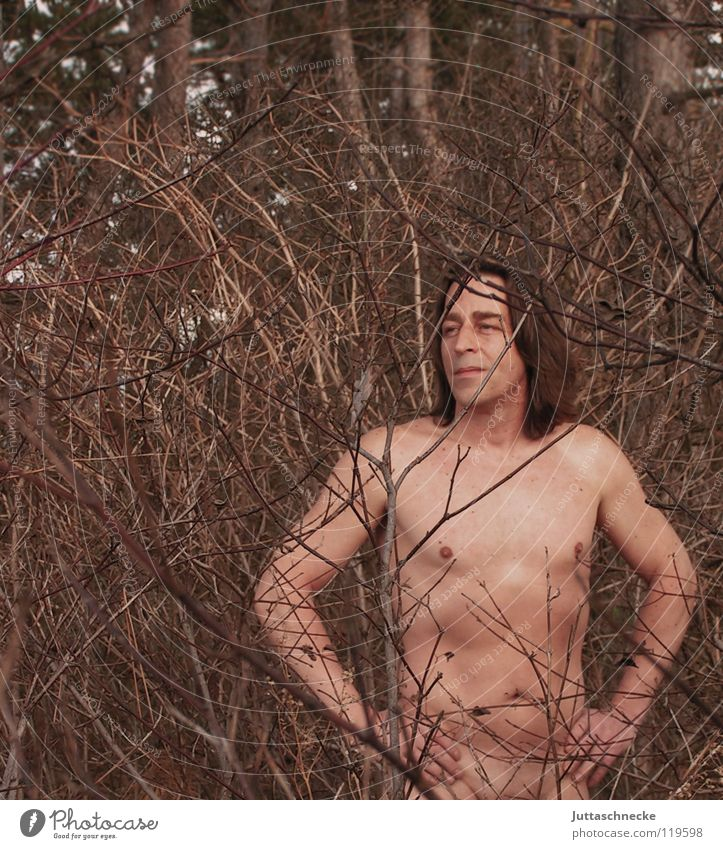 Rooted Naked Forest Tree Man Native Americans Upper body Power Force Healthy Nature Human being Juttas snail Chest hippy Love of nature Branch
