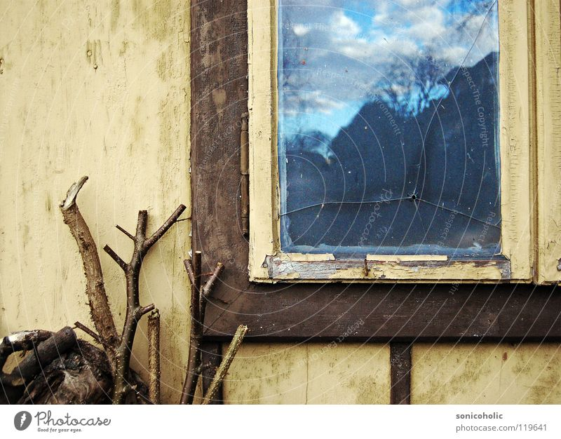 bullet hole Hollow Window Window frame Wood Jump Past Loneliness Gloomy Transience Shot Sky Branch Old