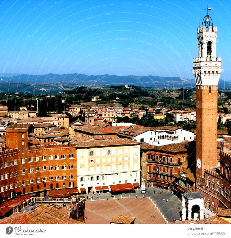Piazza del Campo, Siena (Italy) Colour photo Exterior shot Copy Space top Bird's-eye view Europe Town Places City hall Tower Manmade structures