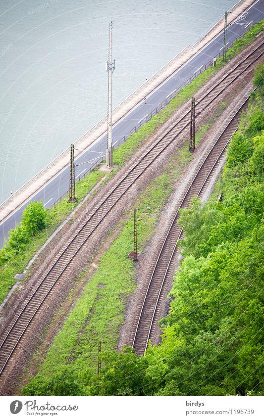 traffic routes Spring Summer Tree Transport Traffic infrastructure Logistics Road traffic Street Inland navigation Waterway Rail transport Railroad tracks