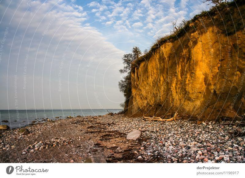 Gold, gold... Don't. Environment Nature Landscape Plant Animal Elements Spring Beautiful weather Rock Waves Coast Beach Baltic Sea Ocean Island Emotions Joy