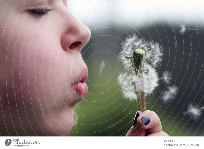 Child Nature Youth (Young adults) Plant Green Summer White Relaxation Hand Girl Environment Face Life Spring Freedom Flying