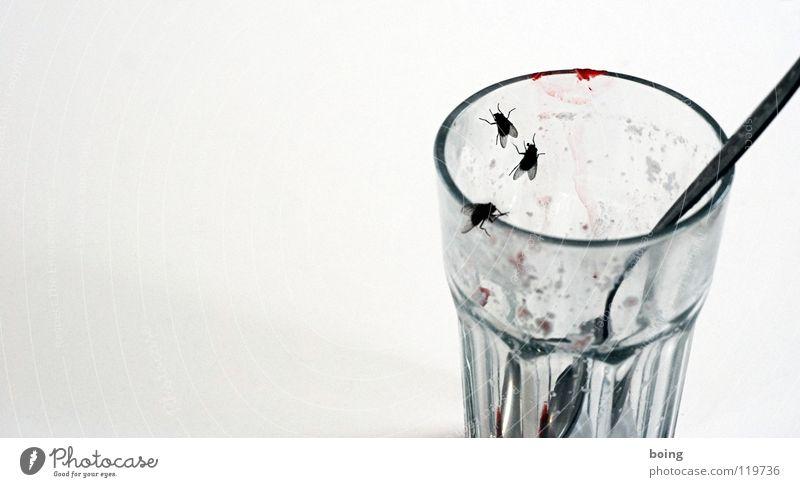 Summer Cold Glass Fly Empty Sweet Refreshment Dessert Strawberry Milk Spoon Lipstick Mug Salto Mosquitos Pests