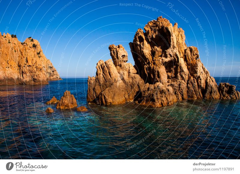Rocky coast of Corsica Vacation & Travel Tourism Trip Adventure Far-off places Cruise Summer vacation Environment Nature Landscape Plant Animal Elements Water