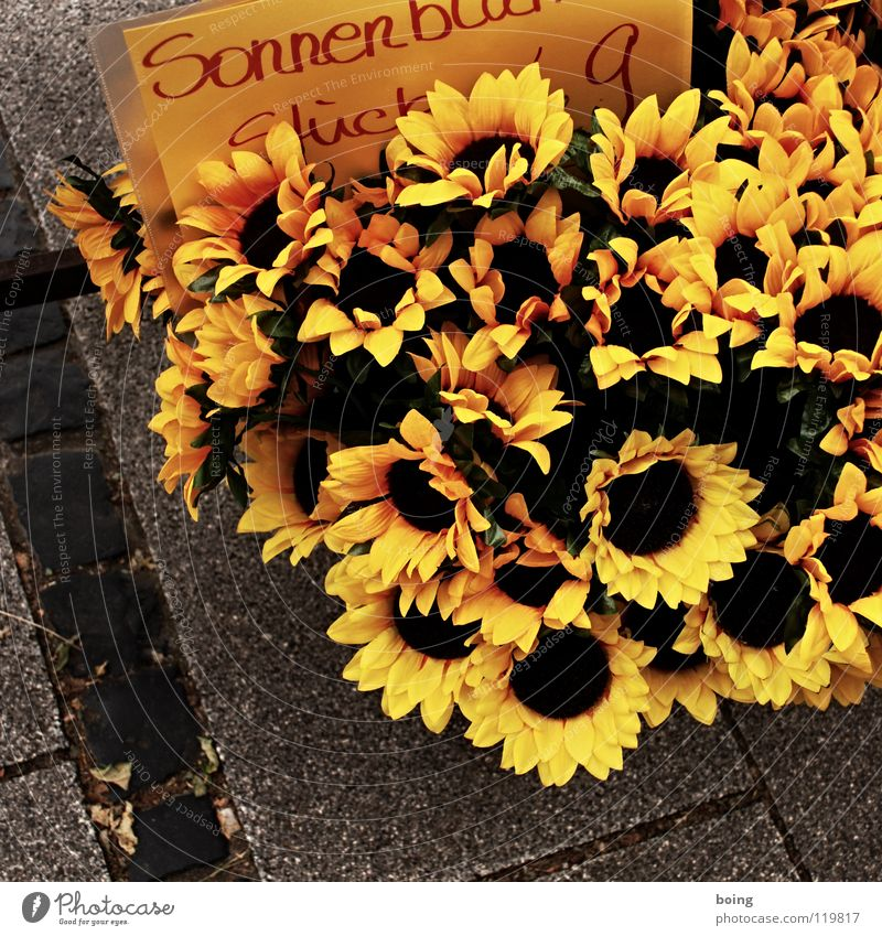 Sunflower for buttonhole Canola Flower Silk flower Paper Daisy Decoration Summer Street vendor Flower stall Mother's Day Date Buttonhole Trade Wholesale market