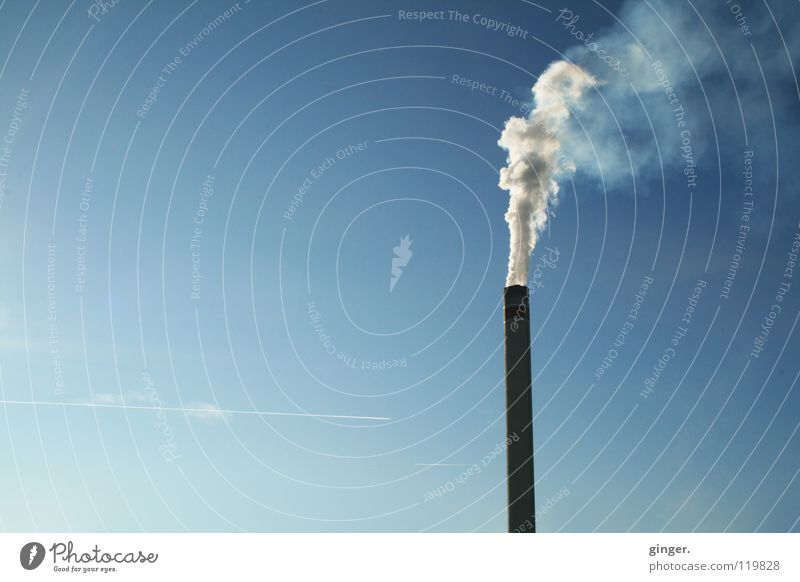 A lot of smoke in nothingness Industry Sky Chimney Smoke Tall Above Blue White Go up Empty Cloudless sky Copy Space left Environmental pollution Deserted