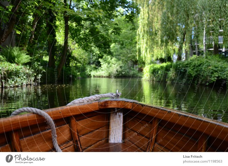Nature Vacation & Travel Water Tree Relaxation Landscape Calm Environment Freedom Lifestyle Contentment Tourism Idyll Bushes Trip Adventure