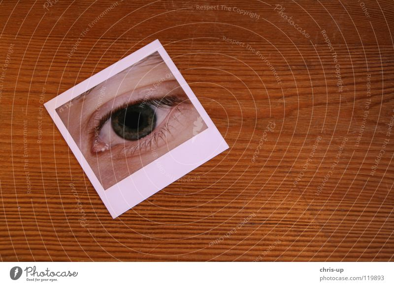 Human being Green Face Eyes Glass Photography Table Safety Polaroid Image Vantage point Mirror Testing & Control Eyelash Appearance Self portrait