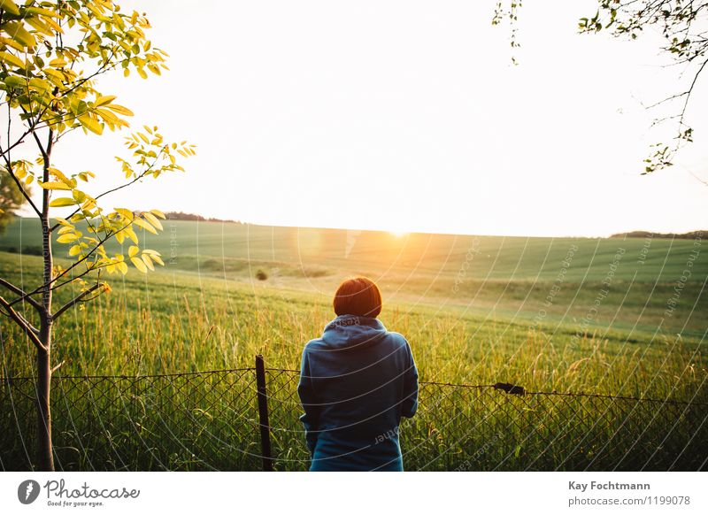 Young woman looking at a field in the evening sun Wellness Harmonious Well-being Contentment Relaxation Calm Meditation Vacation & Travel Far-off places Freedom