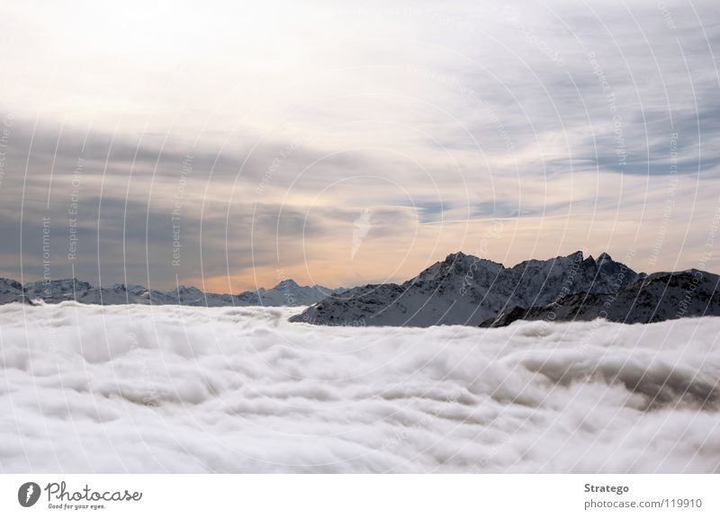 Overview of the Clouds Fog Sea of fog Peak Canton Graubünden Alpine Switzerland Winter Cold Sky Mountain Snow Alps lenzerheide Piz Scalottas Vantage point Tall
