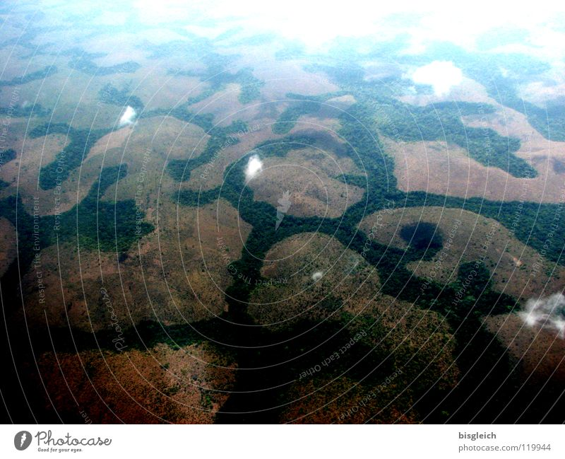 Cameroon from above IV Colour photo Aerial photograph Deserted Bird's-eye view Far-off places Mountain Clouds Forest Virgin forest Africa Airplane Flying