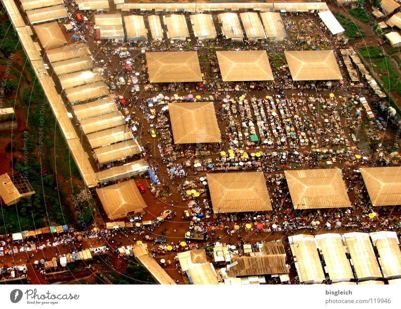 Cameroon from above V Colour photo Aerial photograph Bird's-eye view House (Residential Structure) Yaounde Africa Town Capital city Marketplace
