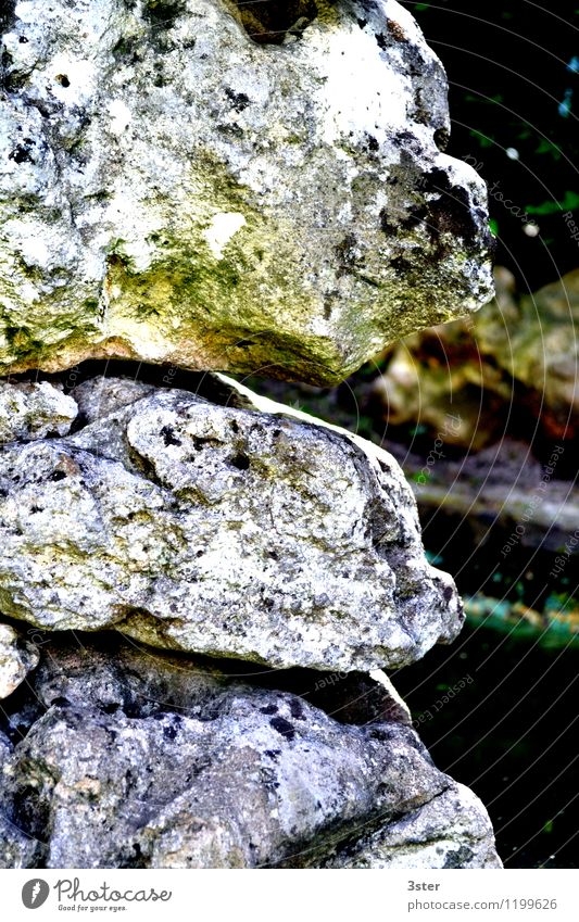 Petrified faces Art Sculpture Nature Rock Stone Figure Pattern Colour photo Exterior shot Detail Structures and shapes Deserted Copy Space right Day Evening