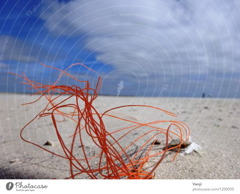 In the sand 2 Vacation & Travel Sun Beach Nature Sand Air Sky Plastic Line Thin Orange String Bushes Colour photo Exterior shot Abstract Structures and shapes