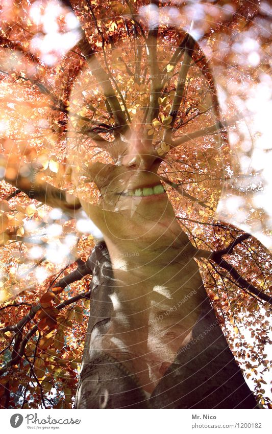 tree fence | UT Cologne Feminine Woman Adults Face Environment Nature Beautiful weather Tree Leaf Forest Whimsical Double exposure Branch Experimental Smiling