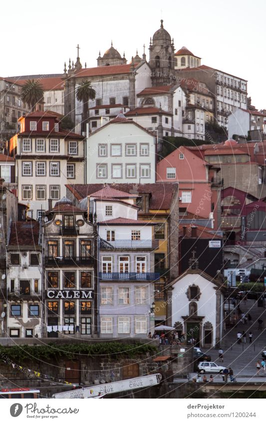 Stacked houses in Porto Vacation & Travel Tourism Trip Adventure Far-off places Freedom Sightseeing City trip Cruise Summer vacation Environment River bank