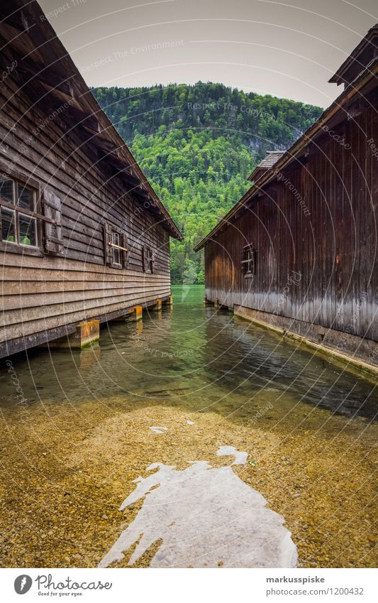boathouse at königssee Elegant Leisure and hobbies Vacation & Travel Tourism Trip Adventure Far-off places Freedom Sightseeing Summer Summer vacation Sun