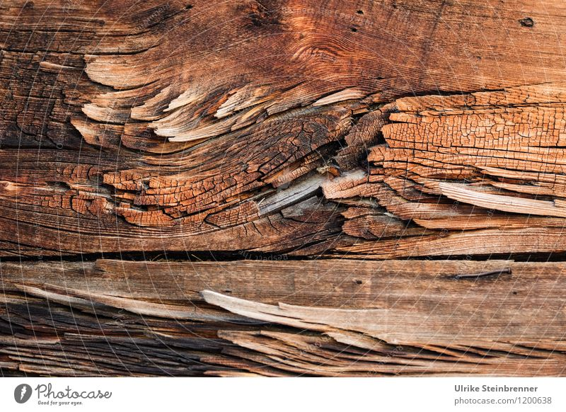 Walser Wood Art 1 Village House (Residential Structure) Facade Old Breathe Sustainability Natural Brown Wooden wall Texture of wood Weathered