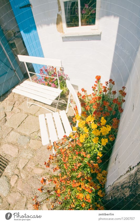 Vacation & Travel Flower Landscape House (Residential Structure) Window Travel photography Facade Tourism Door Copy Space Baltic Sea Chair Monument Entrance
