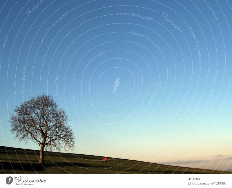 Nature Tree Red Calm Loneliness Far-off places Meadow Mountain Freedom Couple Horizon To go for a walk Leisure and hobbies Hill Partner