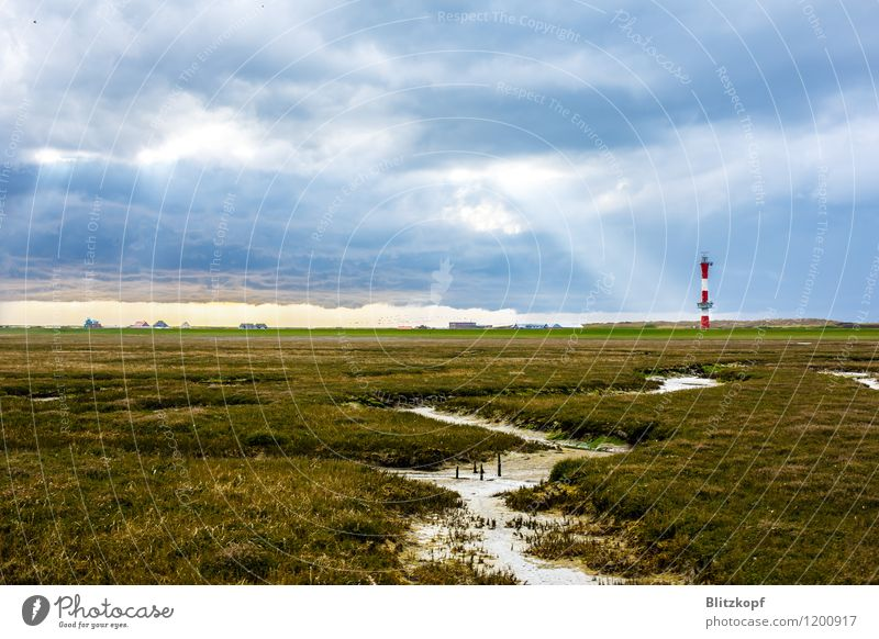 Lighthouse to heaven Vacation & Travel Esthetic Blue Green Hope Longing Wangerooge Sunbeam Clouds Pasture Brook Island Colour photo Exterior shot Deserted