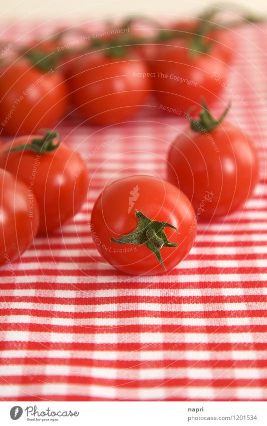 very cherry vine tomatoes Vegetable Tomato Bush tomato Organic produce Vegetarian diet Italian Food Tablecloth To enjoy Red Multiple Checkered salubriously