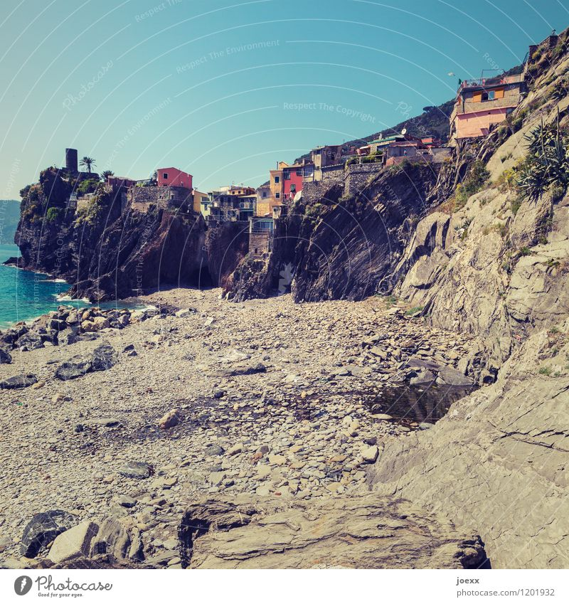 backyard Vacation & Travel Tourism City trip Summer Sky Beautiful weather Waves Coast Ocean Vernazza Italy Village Fishing village House (Residential Structure)