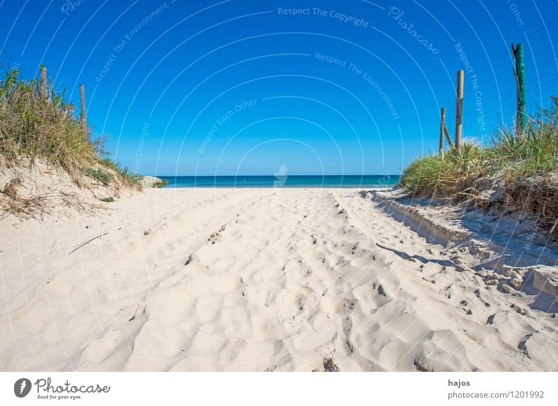 Baltic Sea beach in Ustka, Poland Beautiful Vacation & Travel Tourism Far-off places Summer Beach Ocean Environment Nature Landscape Cloudless sky Horizon