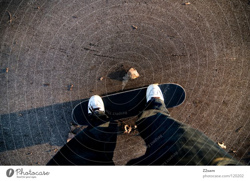 on axles Driving Skateboarding Bird's-eye view Footwear Leaf Tar Concrete Wide angle Long Sports Easygoing Funsport Man Playing Coil Perspective Wooden board