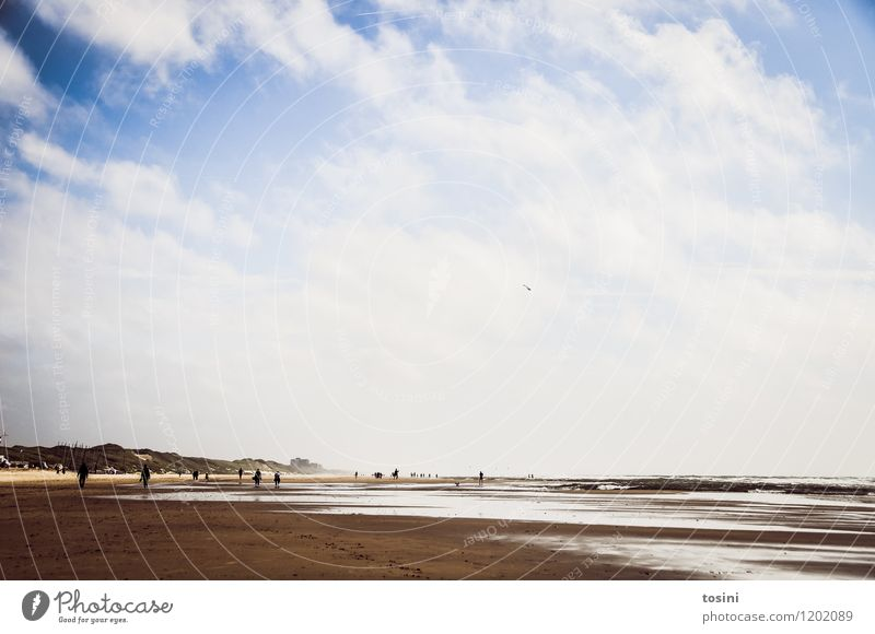 low tide Human being Environment Nature Sand Water Sky only Clouds Waves Coast Lakeside Beach White Ocean Low tide Tide To go for a walk Dune Beach dune