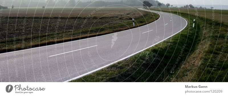 curve Country road Asphalt Freeway Empty Curb Horizon Future Direction White Gray Black Black Forest Transport Curve Street Lanes & trails grass Fog Line