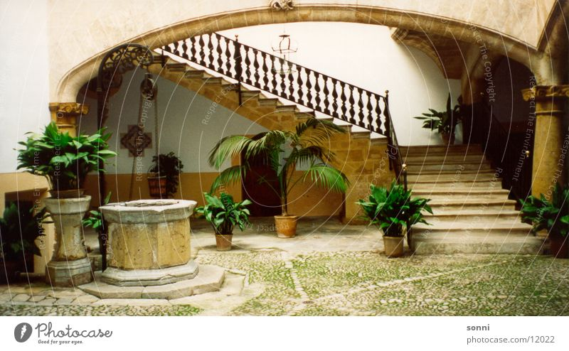 Architecture Stairs Farm Well Palm tree