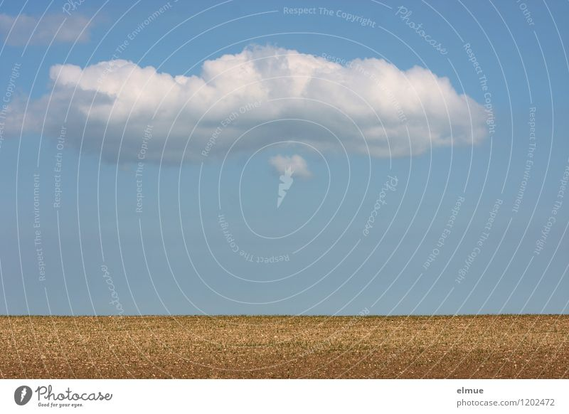 Decorative cloud over a field Environment Nature Landscape Earth Sky Clouds Sun Spring Beautiful weather Field Manmade landscape void Far-off places Infinity