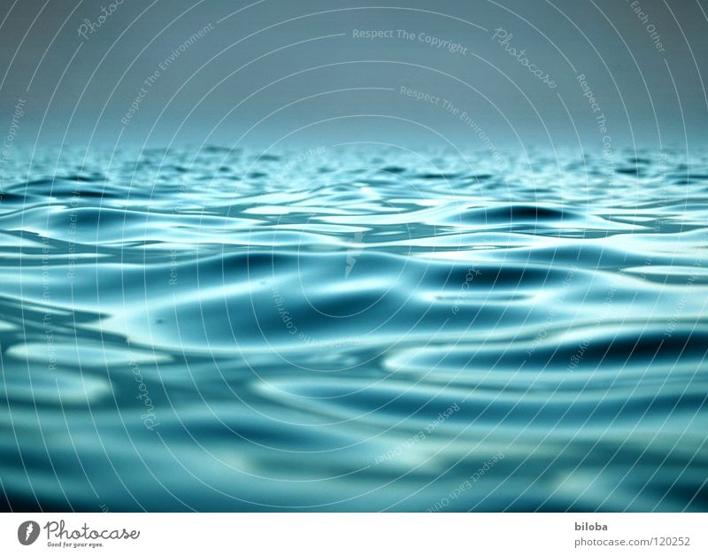 Waves on the lake in soft backlight Water Lake Surface of water Fluid Liquid Peace Smooth Far-off places Wet Calm Rest Comforting Rescue Gale Wind Weather