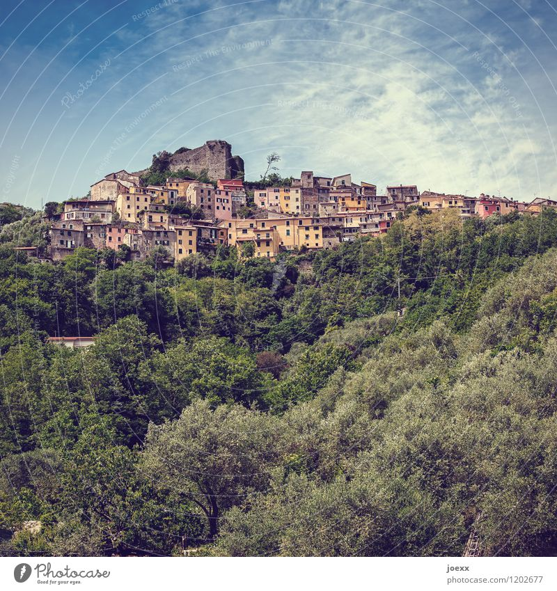 High Houses Vacation & Travel Tourism Mountain Landscape Beautiful weather Forest Trebiano Liguria Italy Village House (Residential Structure) Ruin Old Historic