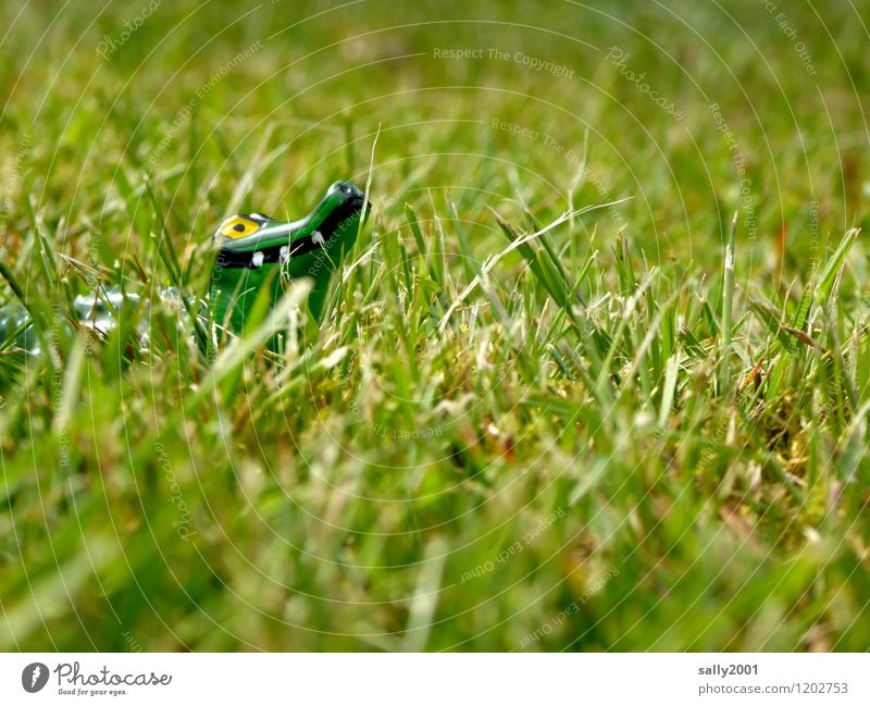 Dangerous animal on soil and field... Plant Grass Garden Park Meadow Crocodile Alligator 1 Animal Observe Discover Hunting Threat Curiosity Green Survive Hide