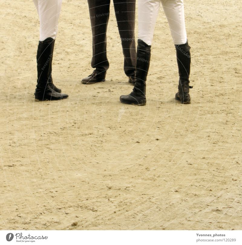 meeting Horseracing Derby Jodhpurs Racing sports Sporting event Bet Game of chance Success Loser Show jumping Workwear Thin Meeting 3 Referee Coach Footwear