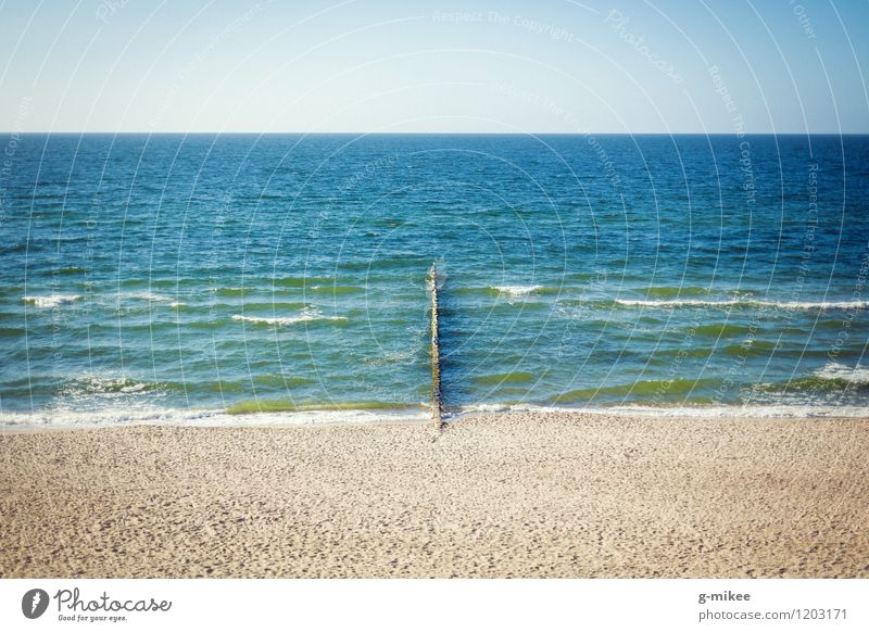 On the beach Nature Landscape Sand Water Sky Horizon Summer Coast Beach Baltic Sea Free Large Blue Yellow Colour photo Exterior shot Deserted Copy Space top Day