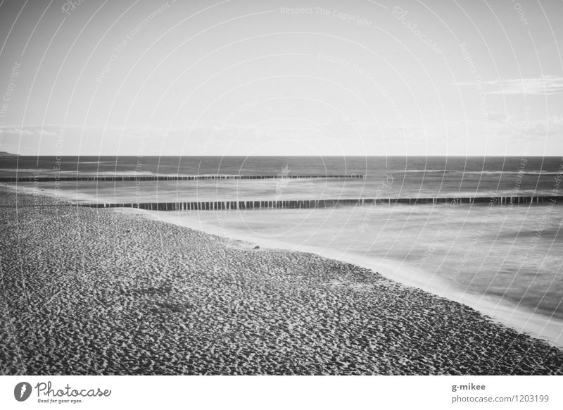 Timeless Nature Water Beach North Sea Baltic Sea Ocean Far-off places Free Infinity Serene Calm Empty Freedom Sandy beach Black & white photo Exterior shot