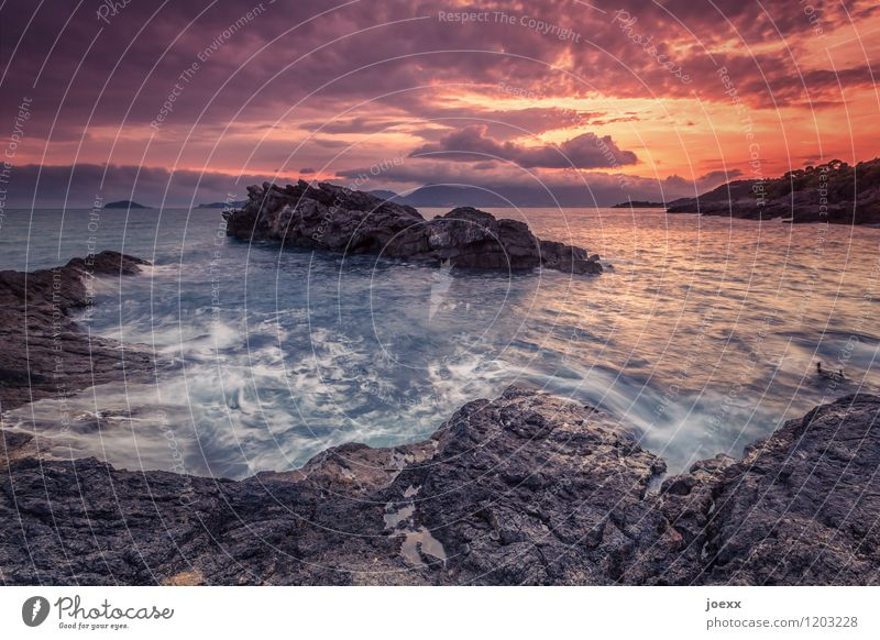 To be a sea Summer vacation Nature Landscape Water Sky Clouds Sunrise Sunset Beautiful weather Rock Waves Coast Ocean Wild Brown Orange Far-off places Lava