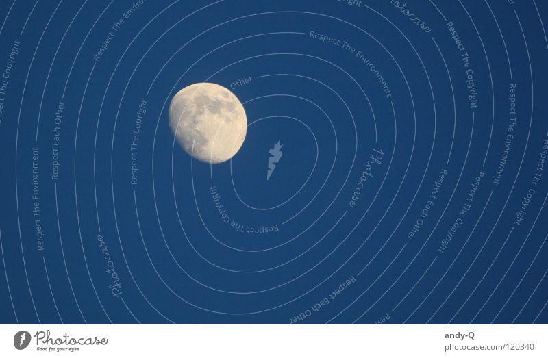 Sky Blue Dark Bright Lighting Stars Romance Universe Moon Dusk Fairy tale Planet Wolf Celestial bodies and the universe Full  moon Moonlight