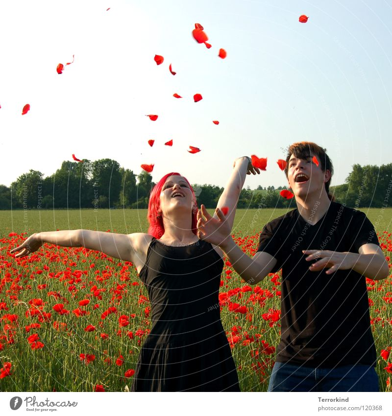 Woman Sky Man Green Tree Red Sun Summer Joy Black Love Feminine Hair and hairstyles Happy Laughter Couple