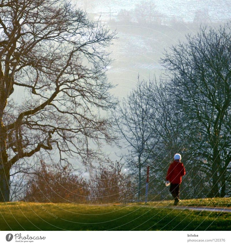 winter walk Woman Old Slowly Red White To go for a walk Tree Might Bulky Individual Relaxation Pamper Bushes Wood Meadow Physics Light Switzerland Evening sun
