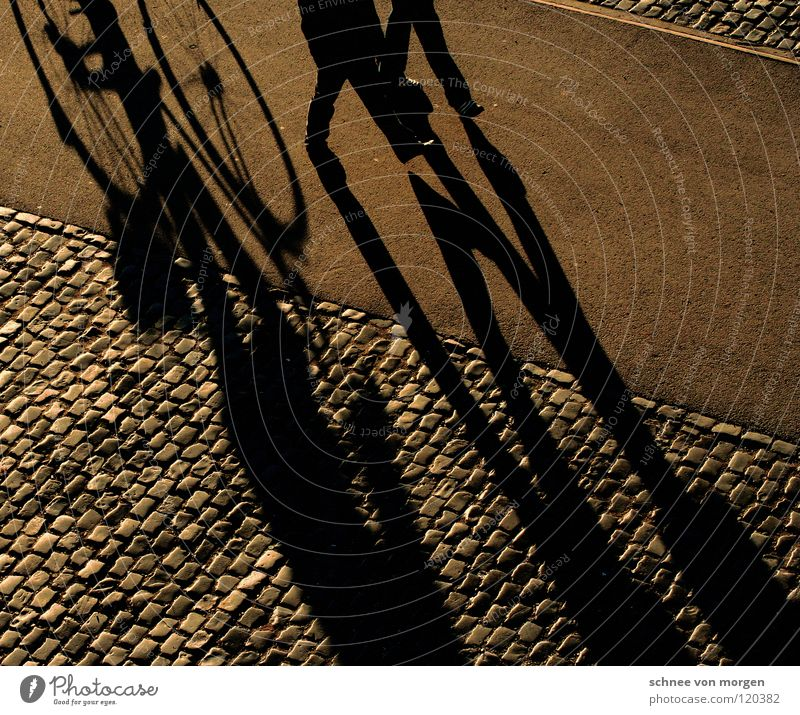 shadow thrower Winter Bicycle Going Leisure and hobbies Calm Sunday Yellow Peace Shadow To go for a walk Human being Walking Cobblestones sun