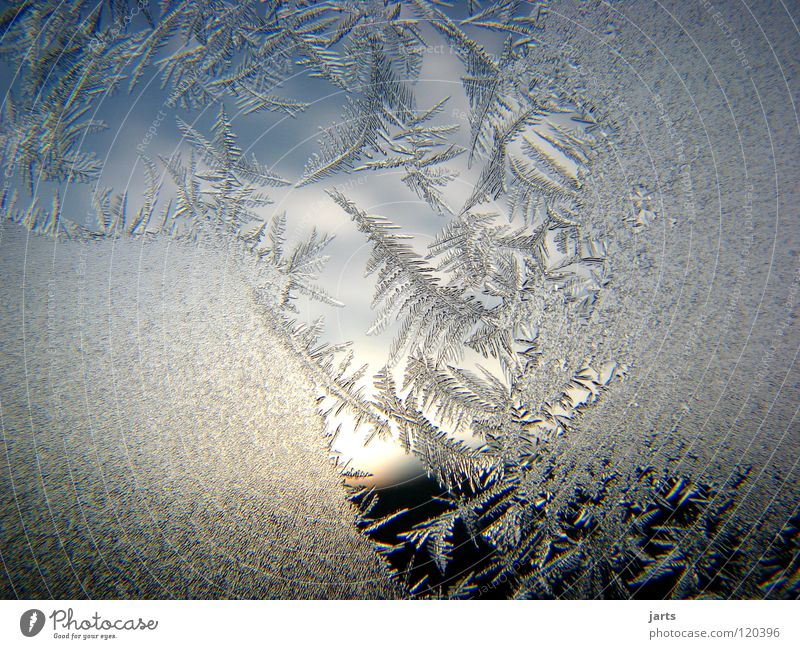 Sky Winter Clouds Cold Window Ice Frost Crystal structure Ice crystal Frostwork