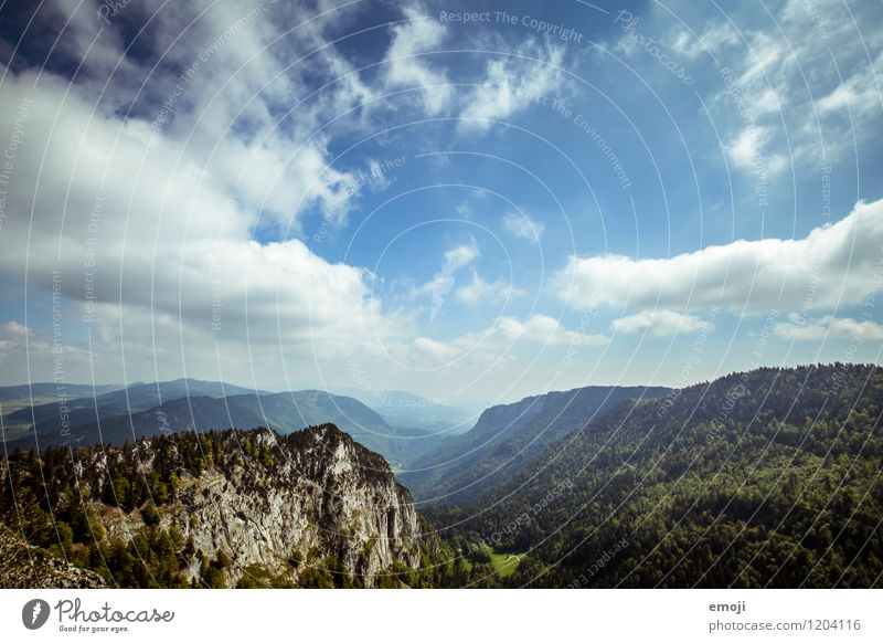 Image for beer advertising Environment Nature Landscape Sky Clouds Summer Beautiful weather Forest Hill Natural Blue Far-off places Colour photo Exterior shot