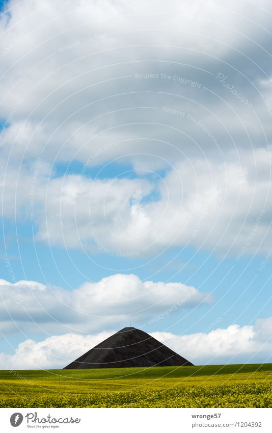 Sky Blue Green Summer White Landscape Clouds Black Environment Yellow Gray Horizon Field Air Tall Point