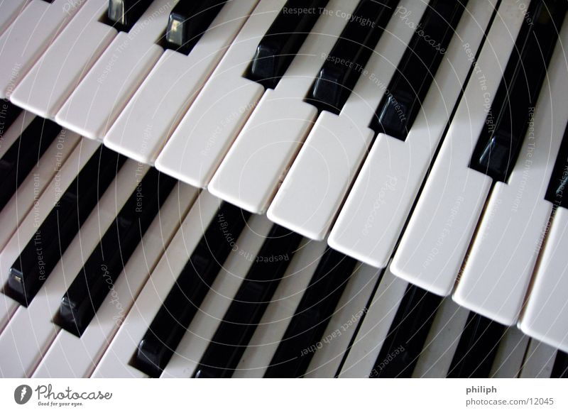 Double Organ 2 Piano Keyboard Concert Things Art Arts and crafts  double keys Black & white photo Double exposure